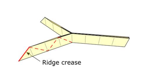 Ridge crease