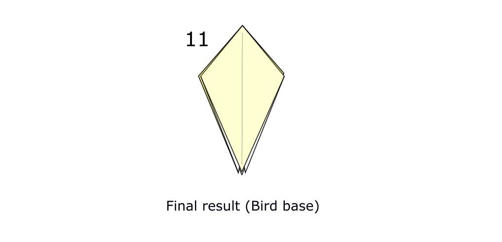 Bird base (s6)